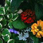 Marilyn's planter